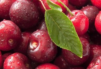 1472534422_202862__ripe-cherries_p