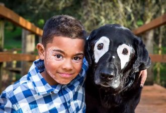 boy-dog-skin-disorder-vitiligo-carter-oregon-1-58d22a066a437__700-700x467