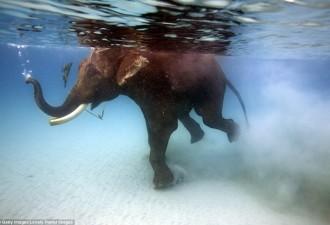 Райские места с самой прозрачной в мире водой (10 фото)