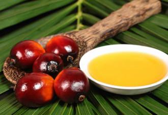 Простой способ проверить молокопродукты на содержание пальмового масла (5 фото)