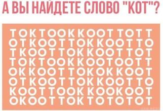 А вы сможете здесь найти слово КОТ?