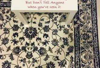 Найди на ковре мобильный телефон (2 фото)
