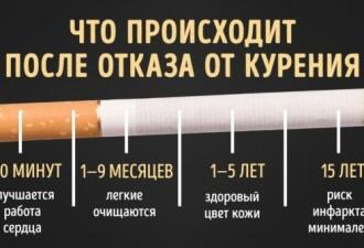Что происходит в организме человека, бросившего курить