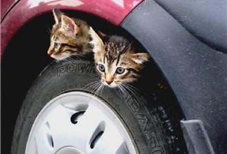 Всем водителям на заметку! Прочтите обязательно! (7 фото)
