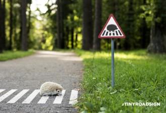 Крошечные дорожные знаки для крошечных жителей Вильнюса (7 фото)