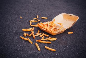 Ученые подтвердили правило пяти секунд для упавшей на пол еды