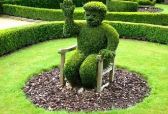 Красивые топиари. Зеленые скульптуры (10 фото)