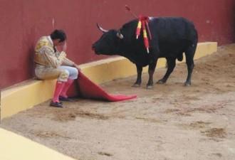 Это невероятное фото знаменует собой конец карьеры матадора Альваро Мунеро