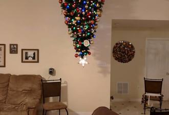 10 новогодних елок, которым не страшны ни кошки, ни дети  (10 фото)