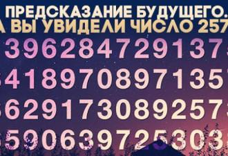 Вы увидели число 257? А может другое?