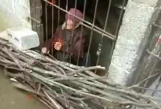Её держали в грязной и холодной клетке много лет (4 фото)