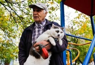 Пенсионеру предложили 500000 рублей за кота!  Что же там за котик такой не дешевый!? Смотрим