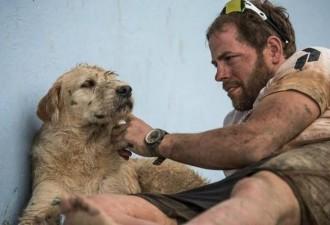 Спортсмены накормили бездомную собаку и не подозревали, к чему это приведет (10 фото)