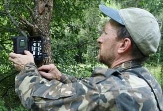 Он установил фотоловушки возле Чернобыля (13 фото)