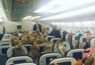 Саудовский принц купил 80 билетов на самолет своим соколам