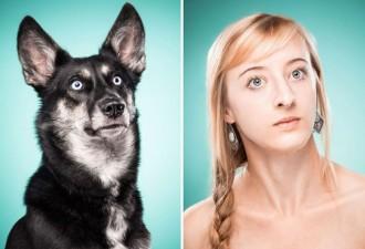 Фотографии собак и их владельцев, похожих как две капли воды (10 фото)