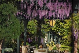 Пергола или беседка во дворе: прекрасные дизайнерские идеи, которые вдохновляют (10 фото)