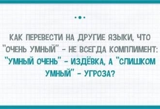 Тонкости и приколы русского языка в картинках (12 фото)