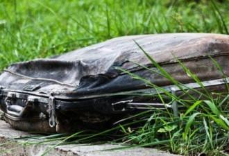 Девушка нашла старый чемодан в парке. То, что она увидела внутри… (7 фото)