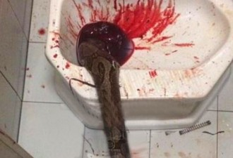 Этот мужчина просто пошел в туалет. То, что случилось потом, похоже на фильм ужасов…(2 фото)