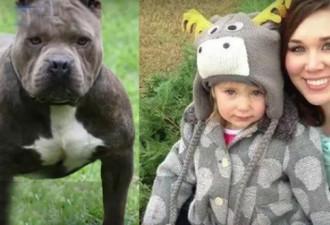 Спасая дочь от питбуля, мать сделала то, что в голове не укладывается (3 фото)