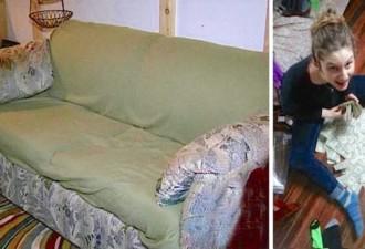 Молодые люди купили старый диван, то что они обнаружили в нём, очень порадовало…