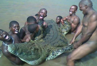 Братья из Лимпопо погибли во время изнасилования крокодила?