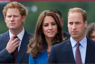 Плохой принц Уильям: Как испортить королевскую репутацию за 1 день (10 фото)