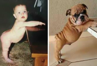 Невероятные сходства: 10 забавных фотографий необычных вещей