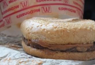 Эти парни положили бутерброд из McDonald's в коробку, открыли ее через 20 лет (6 фото)