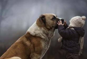 Говорят, Бог смотрит на людей глазами собак…