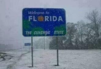 Когда снег — экзотика (11 фото)