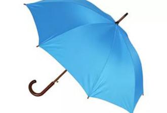Как-то в дождь у друга взял зонт