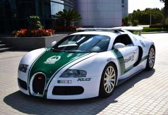 Самые крутые автомобили иностранных «копов» (6 фото)