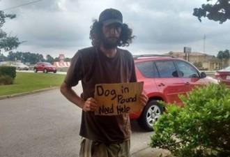 Грязный парень стоял посреди шоссе с табличкой и просил одного: «Спасите её!» (3 фото)