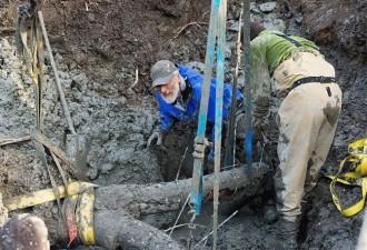 Мужчина начал рыть траншею для новой канализации (6 фото)