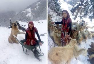 Девочка и ее собака спасли их от гибели (5 фото)