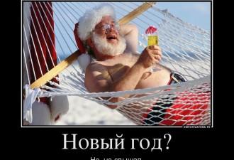 Демотиваторы новогодние (10 фото)