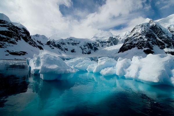 lichen-shag-glacier-antarctica-23804
