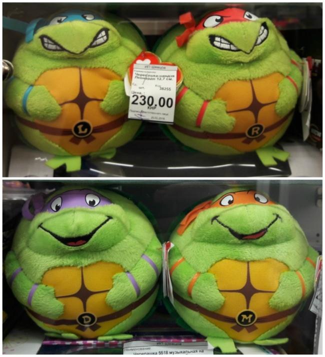 17318765-turtles-1473949968-650-ea9cb640b2-1474023934
