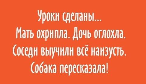 img_27729_original-800-800-1