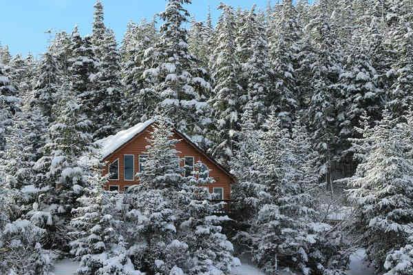 winter-1513202_640