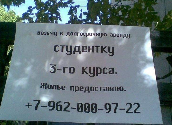 snogsshibatelnye-obyavleniya_117