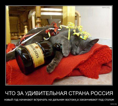 1325519137-1325432518_965479-20111228-031913-bomzorg-demotivator_chto_za_udivitelnaya_strana_rossiya_noviyyi_god_nachinayut_vstrechat_na_dalnem_vostokea_zakanchivayu