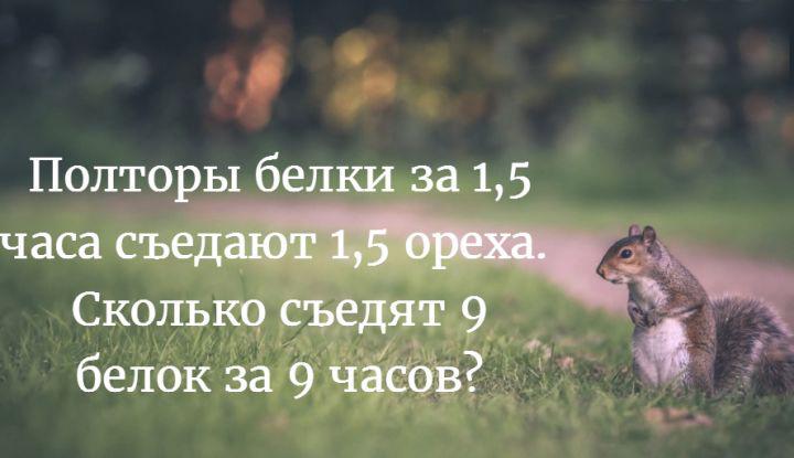 Belki_720x415