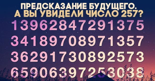 chislo-257_c4ca4238a0b923820dcc509a6f75849b