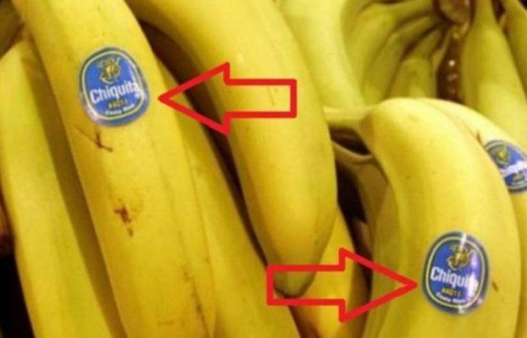 banan-768x493