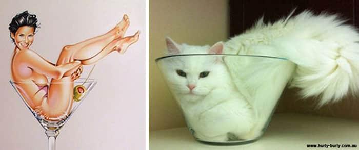 15-cats-vintage17