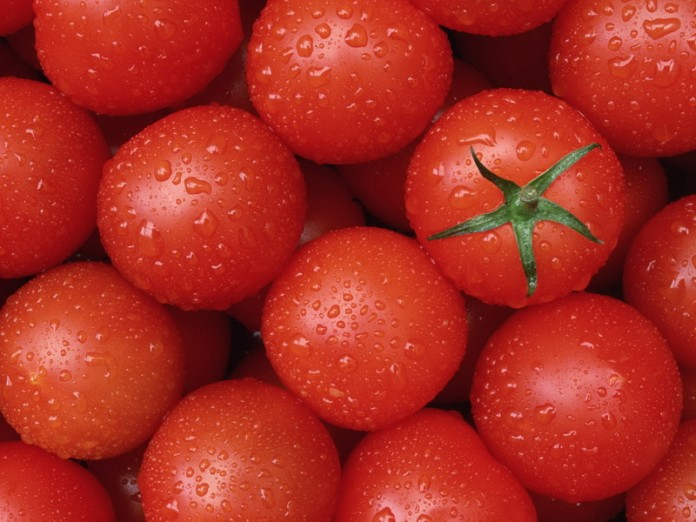 pomidory-696x522