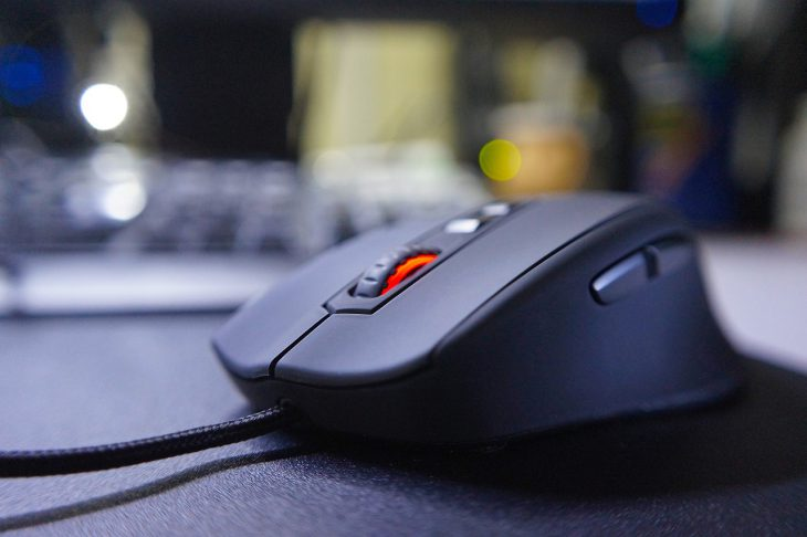 mouse-952654_1280-730x486